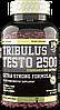 Tribulus Testo 2500 Superior 14 120 tabs.