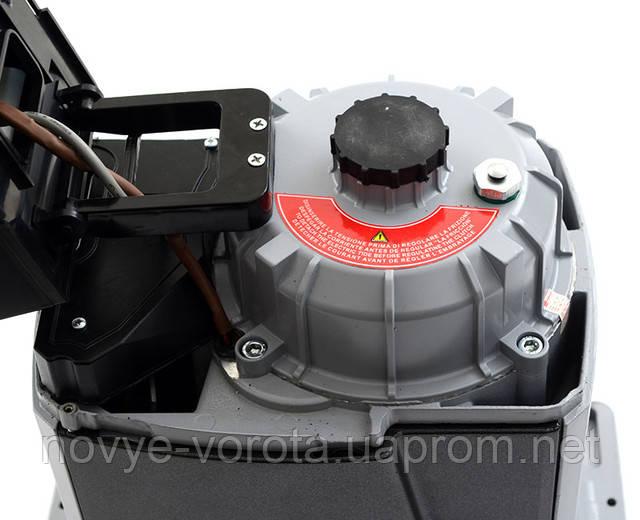 Внешний вид двигателя Rotelli Pro 2000