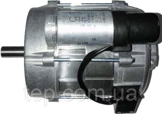 Giersch RG20 Электро двигатель  (мотор) 230 В / 50 Гц 180 Вт
