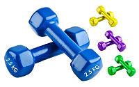 Гантели для фитнеса с виниловым покрытием Радуга (2x2,5кг) ТА-0001-2,5 (2шт, цвета в ассортименте)