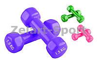 Гантели для фитнеса с виниловым покрытием Радуга (2x1,5кг) ТА-0001-1,5 (2шт, цвета в ассотименте)