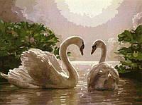 Картина по номерам 40х50, Лебеди