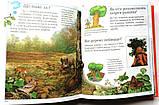 Нова дитяча енциклопедія , фото 6
