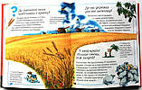 Нова дитяча енциклопедія , фото 7