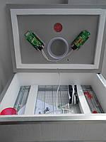 Инкубатор Наседка -70 яиц  механический переворот, цыфровой терморегулятор