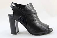 Joce Shoes