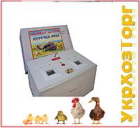 "Инкубатор""Курочка ряба"" 80 яиц, автоматический переворот,цифровой терморегулятор"