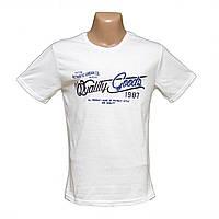 Мужская футболка большие размеры по низким ценам H4809-5