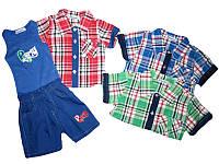 Костюм летний-тройка для мальчика опт, Sincere, размеры 6/12-30/36 месяцев, арт. M-2003