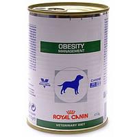 Royal Canin OBESITY MANAGEMENT (влажный корм) 410г