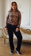 Женский велюровый турецкий костюм EZE, большие размеры 54,56,58,60 купить в Украине