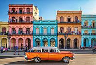 Флизелиновые фотообои 368x248 см. Гавана. Komar XXL4-042