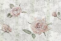 Флизелиновые фотообои 368x248 см. Фреска из роз. Komar XXL4-049