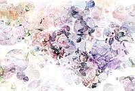 Флизелиновые фотообои 368x248 см. Розы. Komar XXL4-060