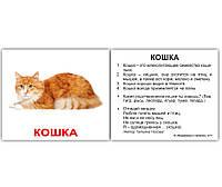 Карточки Домана Домашние животные и детёныши с фактами на белом фоне Вундеркинд с пеленок
