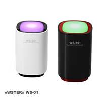 "LED светильник с динамиком ""WSTER"" WS-01"