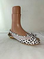 Туфли женские летние SHBA 36, тигровый