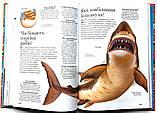 Енциклопедія запитань і відповідей. 1000 відповідей на 1000 запитань, фото 3