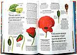 Енциклопедія запитань і відповідей. 1000 відповідей на 1000 запитань, фото 4