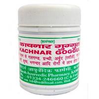 Натуральный противовоспалительный препарат Канчнар Гуггул 40 грамм