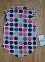 Дитячий літній комплект (блуза+бриджі трикотажні) для дівчинки (Maia, Туреччина), фото 4