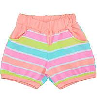 Летние яркие шорты для девочек от 2 до 8 лет Турция (5138)