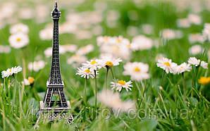 """Экскурсионный тур в Европу """"Week-end в Париже 4 дня"""""""