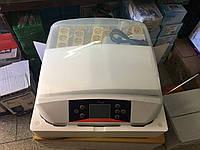 Инкубатор бытовой HHD 56 автомат