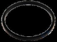 """Сменное уплотнение для фланцевого дискового затвора типа """"Батерфляй"""",  Ду 600, PN40, EPDM"""