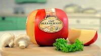 Сыр Голландский (закваска и фермент)