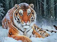 Картина для рисования камнями стразами Diamond painting Алмазная вышивка алмазами мозаика Тигр на снегу
