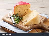 Сыр Российский (закваска,фермент)