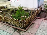 Плетеный(плетень) забор из лозы