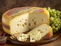 Сыр Ярлсберг(закваска,фермент,пропионик)