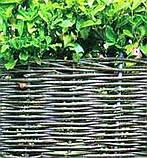 Заборы, изгороди, ограждения в Украине, фото 9