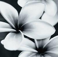 Декор Opoczno Pret-a-porter flower grey composition 750x750