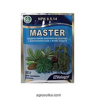 Удобрение Мастер для хвойных растений, 25г