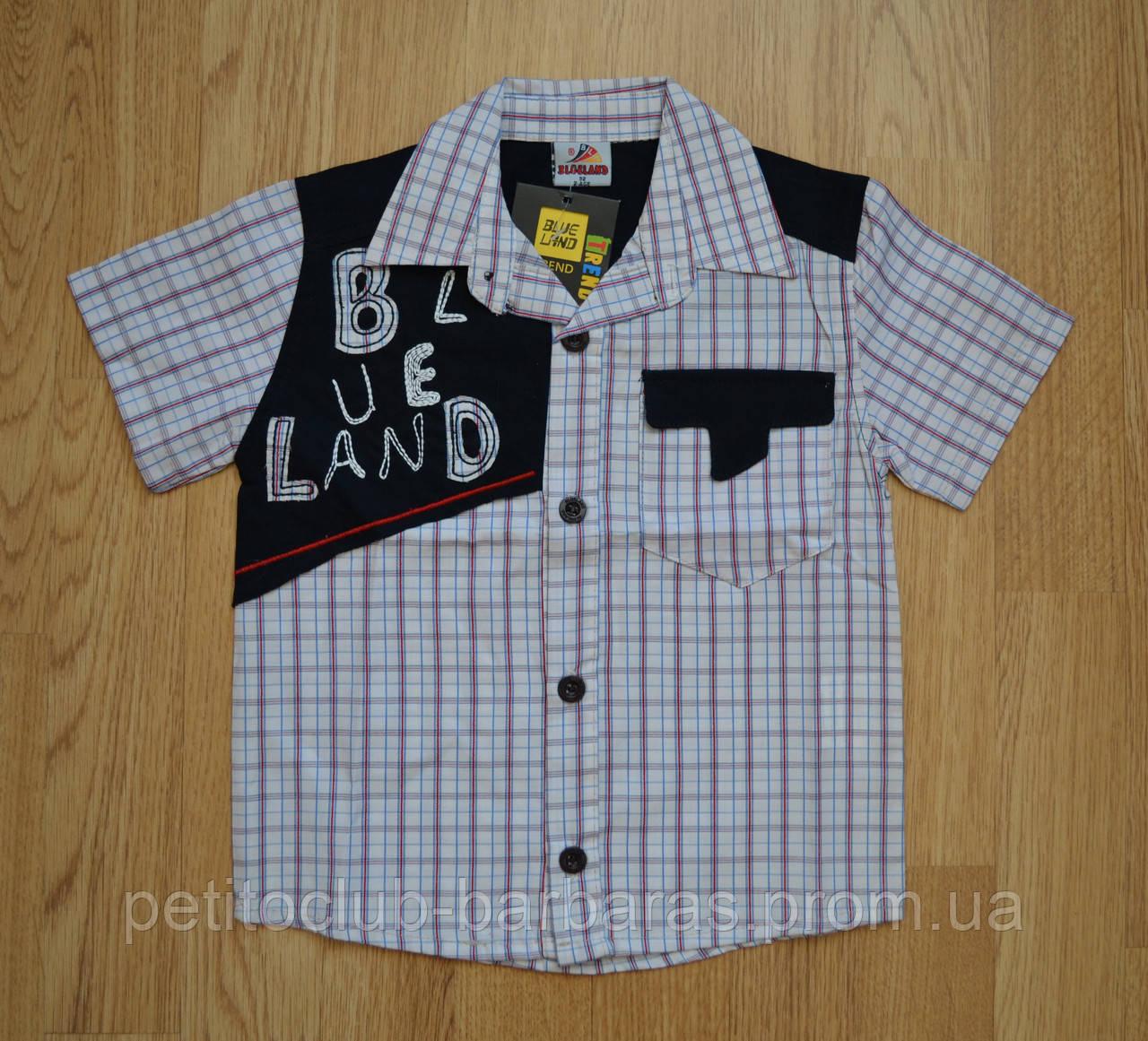 Рубашка для мальчика с коротким рукавом BLD р. 92, 98 см (Турция)