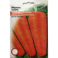 Морковь бюро (3г.)