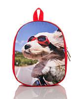 Рюкзак детский красный Пес в очках TM XYZ, фото 1