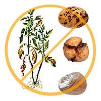 Протравители семян и картофеля