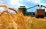 Американские фонды делают ставки на аграрный и портовый сектор украинской экономики!