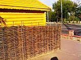 Плетень тын лоза Заборы, изгороди, ограждения в Украине, фото 7