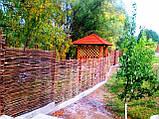 Плетень тын лоза Заборы, изгороди, ограждения в Украине, фото 10