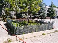 Плетень тын лоза Заборы, изгороди, ограждения в Украине, фото 1