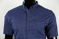 Рубашка мужская ANG 35094 полубатал