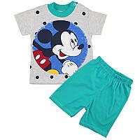 Костюм с шортами для мальчика Возраст: 9-12-18 месяцев (5175-1)