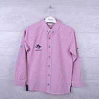 """Рубашка подростковая """" Benics"""". для мальчика. 9-12 лет. Розовая. Оптом."""