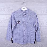 """Рубашка подростковая """" Benics"""". для мальчика. 9-12 лет. Синяя. Оптом."""