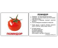 Овощи (ламинированные) - Большие карты домана, Вундеркинд с пеленок